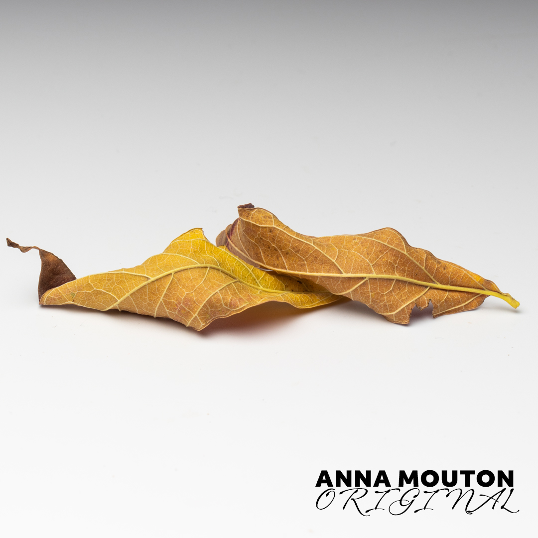 Pair of autumn leaves. Photo by Anna Mouton.