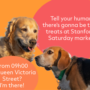Facebook post for the Stanford Saturday Morning Market designed by Anna Mouton.