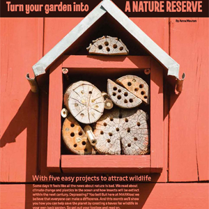 201904 MARKtoe article: Turn your garden into a nature reserve by Anna Mouton.