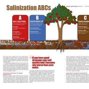Fresh Quarterly September 2019. Infographic: Salinization ABCs created by Anna Mouton.