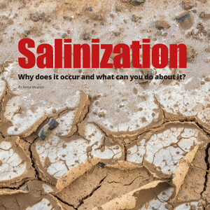 201909 Fresh Quarterly article. Salinization: why does it occur and what can you do about it? by Anna Mouton.
